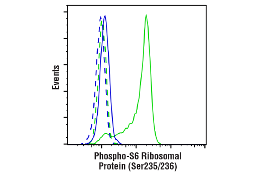 Flow Cytometry Image 1: Phospho-S6 Ribosomal Protein (Ser235/236) Antibody