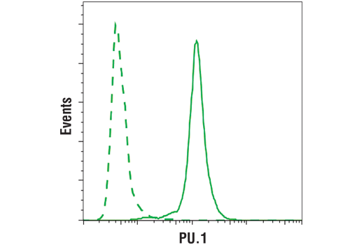 Flow cytometric analysis of THP-1 cells using PU.1 (solid line) compared to concentration-matched Rabbit (DA1E) mAb IgG XP® Isotype Control #3900 (dashed line). Anti-rabbit (Alexa Fluor® 488 Conjugate) #4412 was used as a secondary antibody.