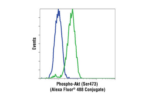 Flow cytometric analysis of Jurkat cells, untreated (green) or LY294002 and wortmannin treated (blue), using Phospho-Akt (Ser473) (193H12) Rabbit mAb (Alexa Fluor<sup>®</sup> 488 conjugate).