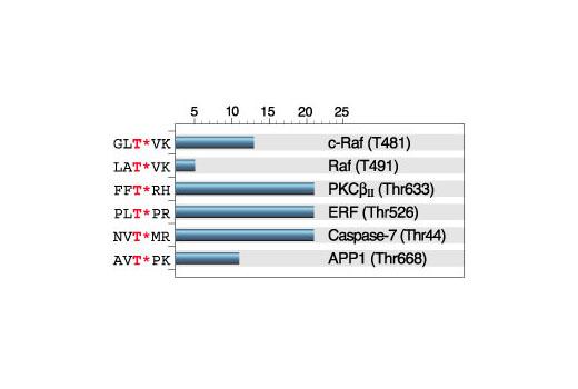 Phospho-Threonine-X-Arginine Antibody ELISA: Signal-to-noise ratio of phospho- versus nonphospho-peptides containing the phospho-threonine-X-arginine motif. (T* denotes phosphorylated threonine.)