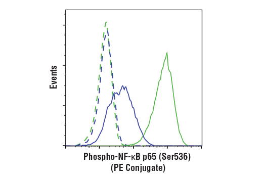 Flow cytometric analysis of HeLa cells, untreated (blue) or treated with hTNF-α #8902 and Calyculin A #9902 (20 ng/ml and 100 nM, 15 min; green), using Phospho-NF-κB p65 (Ser536) (93H1) Rabbit mAb (PE Conjugate) (solid lines) or concentration-matched Rabbit (DA1E) mAb IgG XP® Isotype Control (PE Conjugate) #5742 (dashed lines).
