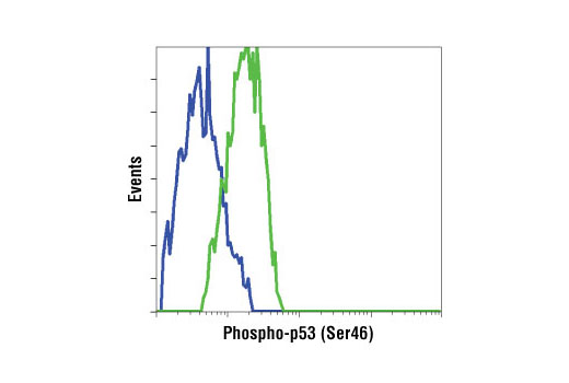 Flow cytometric analysis of HT-29 cells, untreated (blue) or UV-treated (green), using Phospho-p53 (Ser46) Antibody.