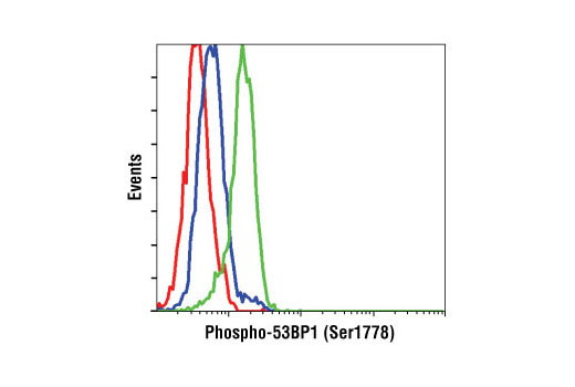 Flow Cytometry Image 1: Phospho-53BP1 (Ser1778) Antibody