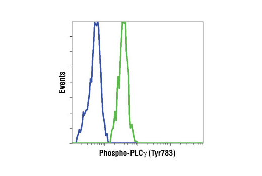 Flow cytometric analysis of NIH3T3 cells, untreated (blue) or PDGF treated (green), using Phospho-PLCγ1 (Tyr783) Antibody.
