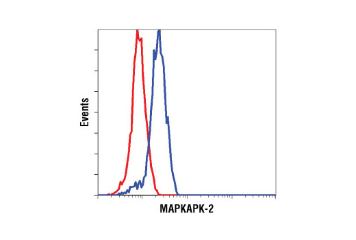 Flow cytometric analysis of Hela cells using MAPKAPK-2 Antibody (blue) compared to a nonspecific negative control antibody (red).