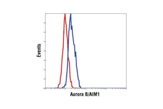 Flow cytometric analysis of Hela cells, using Aurora B/AIM1 Antibody (blue) compared to a nonspecifc negative control antibody (red).