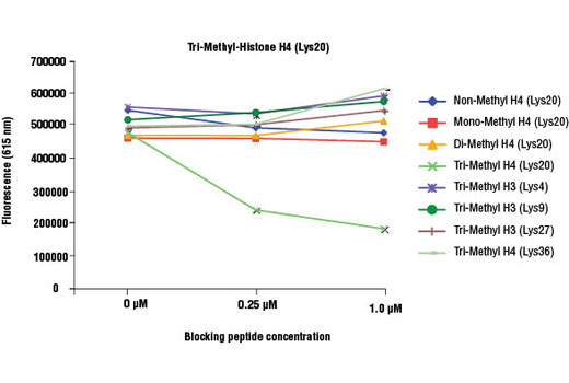 Tri-Methyl Histone H4 (Lys20) (D84D2) Rabbit mAb specificity was determined by peptide ELISA. The graph depicts the binding of the antibody to pre-coated tri-methyl histone H4 (Lys20) peptide in the presence of increasing concentrations of various competitor peptides. As shown, only the tri-methyl histone H4 (Lys20) peptide competed away binding of the antibody.