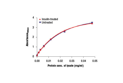 Figure 2: The relationship between protein concentration of lysates from untreated and insulin-treated CHO-IR/IRS-1 cells and the absorbance at 450 nm is shown. After starvation, CHO-IR/IRS-1 cells (85% confluence) were treated with insulin (100 nM) for 2 min at 37°C and then lysed.