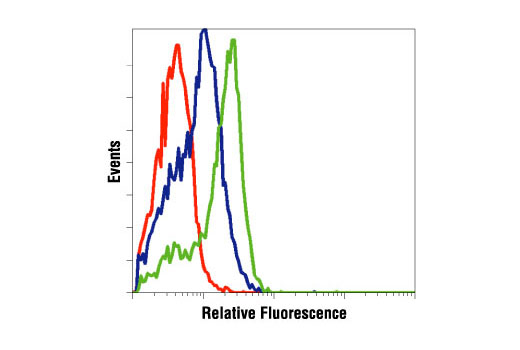 Flow cytometric analysis of K562 cells, untreated (green) or Gleevec® (STI571)- treated (blue), using Phospho-Bcr (Tyr177) Antibody compared to a nonspecific negative control antibody (red).