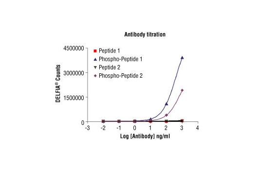 Elisa Peptide Polyclonal Antibody