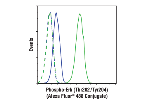Flow cytometric analysis of Jurkat cells treated with U0126 (10um, 3hr; blue) or treated with TPA (200nM, 30 min; green) using Phospho-p44/42 MAPK (Erk1/2) (Thr202/Tyr204) (E10) Mouse mAb (Alexa Fluor® 488 Conjugate) (solid lines) or concentration-matched Rabbit (DA1E) mAb IgG XP<sup>®</sup> Isotype Control (Alexa Fluor<sup>®</sup> 488 Conjugate) #2975 (dashed lines).