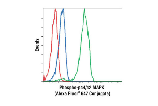 Flow cytometric analysis of Jurkat cells, UO126-treated (blue) or PMA-treated (green), using Phospho-p44/42 MAPK (Erk1/2) (Thr202/Tyr204) (E10) Mouse mAb (Alexa Fluor<sup>®</sup> 647 conjugate) compared to a nonspecific control antibody (red).