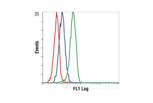 Flow cytometric analysis of THP-1 cells, untreated (blue) or anisomycin-treated (green), using Phospho-p38 MAPK (Thr180/Tyr182) (28B10) Mouse mAb (Alexa Fluor<sup>®</sup> 488 Conjugate) compared to a nonspecific control antibody (red).