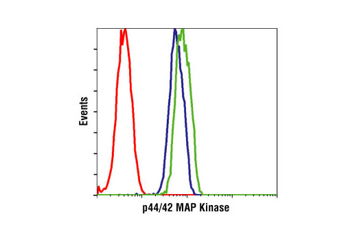 Image 1: MAPK Family Antibody Sampler Kit