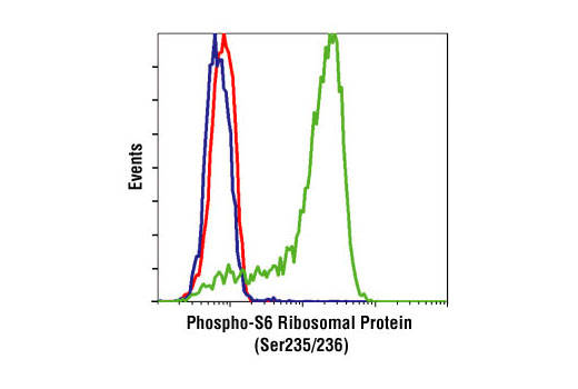 Flow cytometric analysis of Jurkat cells, untreated (green), or LY294002, Wortmannin and U0126-treated (blue), using Phospho-S6 Ribosomal Protein (Ser235/236) (2F9) Rabbit mAb compared to a nonspecific negative control antibody (red).