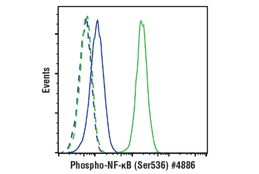 Flow cytometric analysis of HeLa cells, untreated (blue) or treated with hTNF-α #8902 and Calyculin A #9902 (20 ng/ml and 100 nM, 15 min; green), using Phospho-NF-κB p65 (Ser536) (93H1) Rabbit mAb (Alexa Fluor<sup>®</sup> 488 Conjugate) (solid lines) or concentration-matched Rabbit (DA1E) mAb IgG XP<sup>®</sup> Isotype Control (Alexa Fluor<sup>®</sup> 488 Conjugate) #2975 (dashed line).