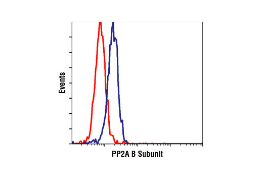 Flow cytometric analysis of NIH/3T3 cells using PP2A B Subunit Antibody (blue) compared to a nonspecifc negative control antibody (red).