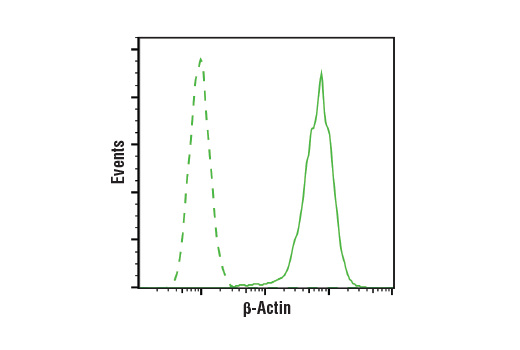 Flow Cytometry Image 1: β-Actin (13E5) Rabbit mAb