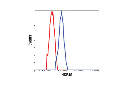 Flow cytometric analysis of HeLa cells, using HSP40 Antibody (blue) compared to a nonspecific negative control antibody (red).