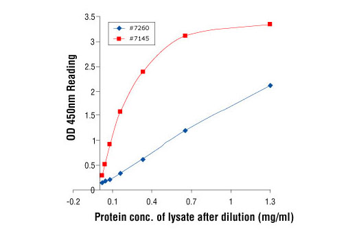 Figure 2: Linear relationship between protein concentration of lysates from UV-treated 293 cells and kit assay optical density readings. Pathscan® Phospho-c-Jun (Ser63) Sandwich ELISA Kit II #7145 is more sensitive than kit # 7260 over a range of lysate concentrations. 293 cells (70-90% confluence) were treated without or with UV and lysed after incubation at 37oC for 30 minutes.