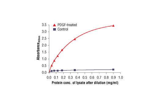 Figure 3: Relationship between protein concentration of lysates from untreated and PDGF-treated NIH/3T3 cells and Absorbance at 450 nm is shown. Cells (80% confluence) were treated with PDGF (50 ng/ml) and lysed after incubation at 37ºC for 20 minutes.
