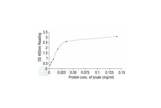 ELISA Kit Protein Kinase c Inhibitor Activity