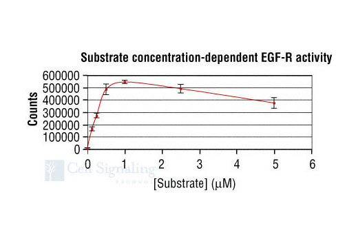 Image 3: HTScan® EGFR Kinase Assay Kit