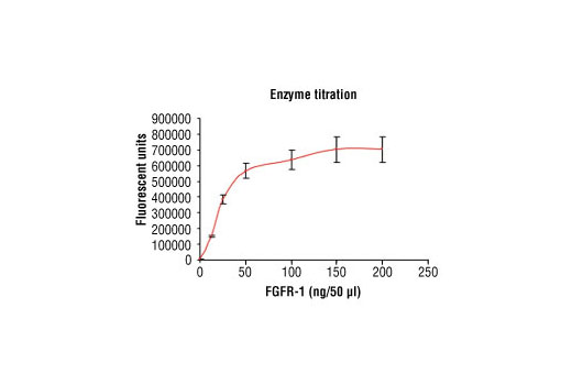 Image 1: HTScan® FGF Receptor 1 Kinase Assay Kit