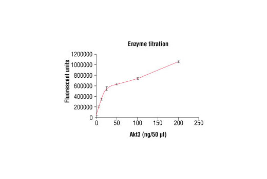 Image 1: HTScan® Akt3 Kinase Assay Kit