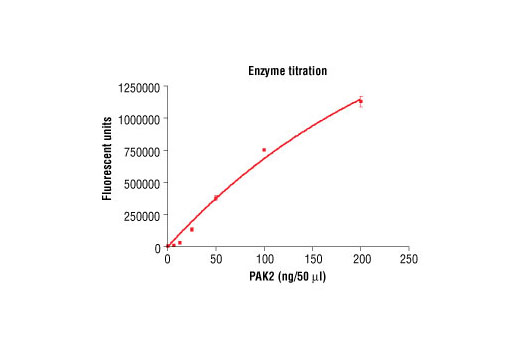 Image 1: HTScan® PAK2 Kinase Assay Kit