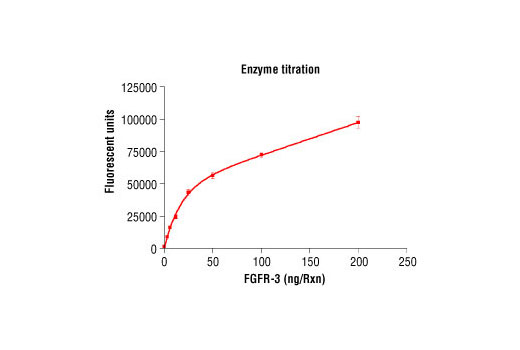 Image 1: HTScan® FGF Receptor 3 Kinase Assay Kit