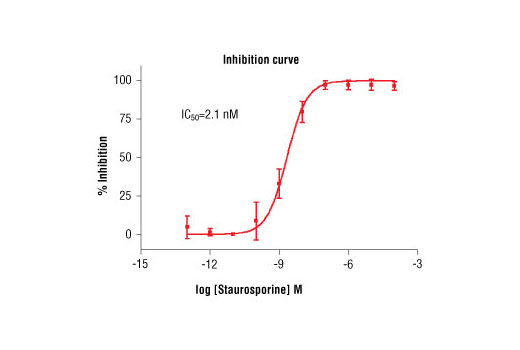 Image 1: HTScan® FLT3 Kinase Assay Kit