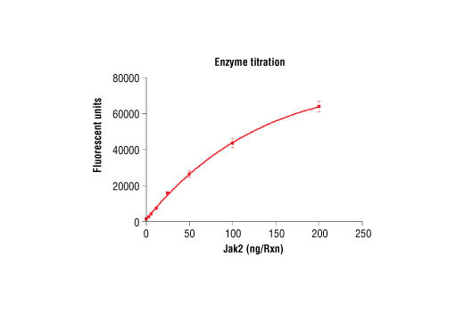 Image 1: HTScan® Jak2 Kinase Assay Kit