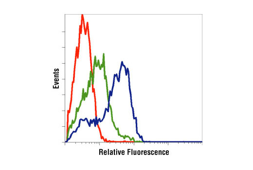 Flow cytometric analysis of Jurkat cells, untreated (green) or PMA-treated (blue), using Phospho-p44/42 MAPK (Erk1/2) (Thr202/Tyr204) Antibody compared to a nonspecific negative control antibody (red).