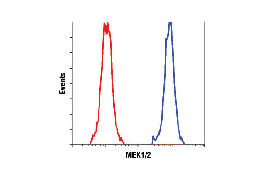 Flow cytometric analysis of Jurkat cells using MEK1/2 (D1A5) Rabbit mAb (blue) compared to Rabbit (DA1E) mAb IgG XP<sup>®</sup> Isotype Control #3900 (red).