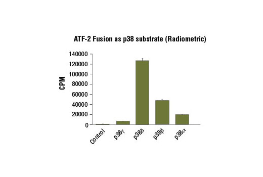 Image 2: ATF-2 Fusion Protein