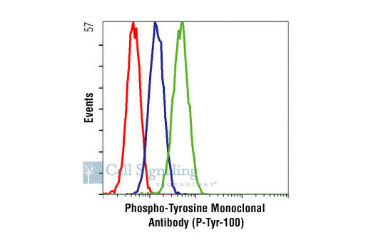Flow cytometric analysis of K562 cells, untreated (green) or Gleevec®- treated (blue), using Phospho-Tyrosine Mouse mAb (P-Tyr-100) compared to a nonspecific negative control antibody (red).