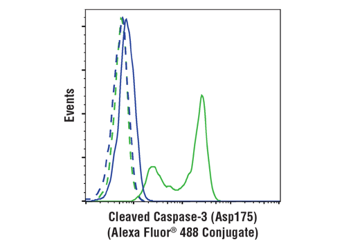 Flow cytometric analysis of Jurkat cells, untreated (blue) or treated with etoposide #2200 (25 μM, overnight; green), using Cleaved Caspase-3 (Asp175) Antibody (Alexa Fluor<sup>®</sup> 488 Conjugate) (solid lines) or concentration-matched Rabbit (DA1E) mAb IgG XP<sup>®</sup> Isotype Control (Alexa Fluor<sup>®</sup> 488 Conjugate) #2975 (dashed line).