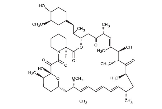 Chemical Modulators - Rapamycin - 10 nmol #9904 - Pi3k / Akt Signaling