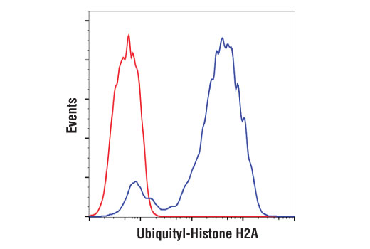 Flow cytometric analysis of HeLa cells using Ubiquityl-Histone H2A (Lys119) (D27C4) XP® Rabbit mAb (blue) compared to concentration-matched Rabbit (DA1E) mAb IgG XP® Isotype Control #3900 (red). Anti-rabbit IgG (H+L), F(ab')2 Fragment (Alexa Fluor® 488 Conjugate) #4412 was used as a secondary antibody.