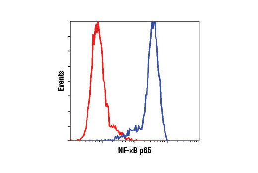 Flow cytometric analysis of HeLa cells using NF-κB p65 (D14E12) XP<sup>®</sup> Rabbit mAb (blue) compared to concentration matched Rabbit (DA1E) mAb IgG XP<sup>®</sup> Isotype Control #3900 (red).