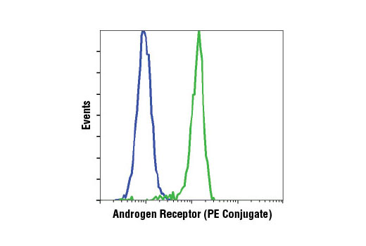 Monoclonal Antibody Flow Cytometry Androgen Receptor Activity