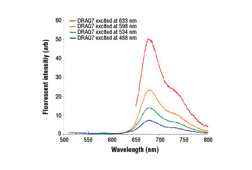 DRAQ7<sup>® </sup>emission spectra when excited at various wavelengths.