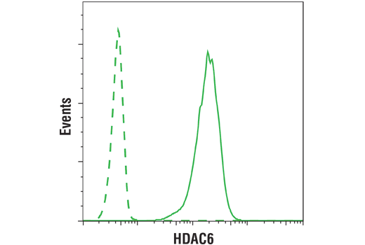 Flow cytometric analysis of K562 cells using HDAC6 (D2E5) Rabbit mAb (solid line) compared to concentration-matched Rabbit (DA1E) mAb IgG XP® Isotype Control #3900 (dashed line). Anti-rabbit IgG (H+L), F(ab')<sub>2</sub> Fragment (Alexa Fluor® 488 Conjugate) #4412 was used as a secondary antibody.