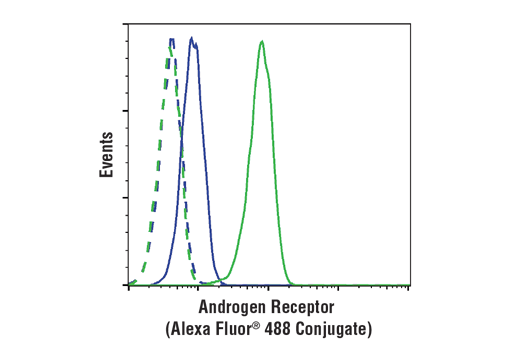 Flow cytometric analysis of Jurkat cells (blue) and LNCap cells (green) using Androgen Receptor (D6F11) XP® Rabbit mAb (Alexa Fluor® 488 Conjugate) (solid lines) or a concentration-matched Rabbit (DA1E) mAb IgG XP<sup>®</sup> Isotype Control (Alexa Fluor<sup>®</sup> 488 Conjugate) #2975 (dashed lines).