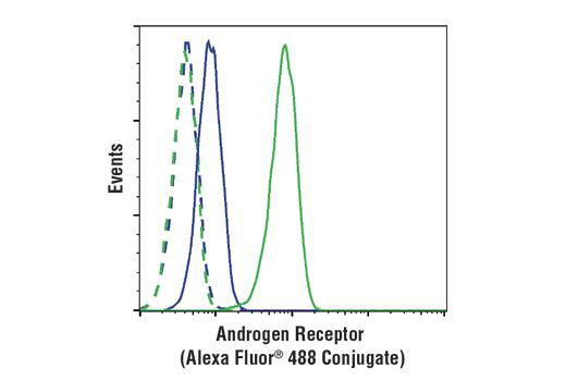 Monoclonal Antibody - Androgen Receptor (D6F11) XP® Rabbit mAb (Alexa Fluor® 488 Conjugate), UniProt ID P10275, Entrez ID 367 #7395 - Primary Antibody Conjugates