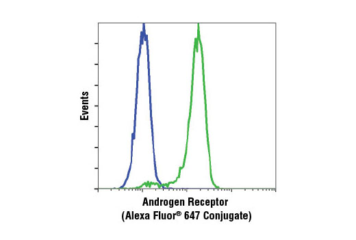 Flow cytometric analysis of Jurkat (blue) and LNCaP (green) cells using Androgen Receptor (D6F11) XP<sup>®</sup> Rabbit mAb (Alexa Fluor<sup>®</sup> 647 Conjugate).
