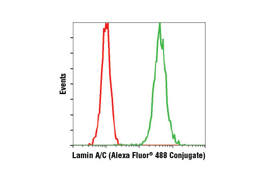 Flow cytometric analysis of HeLa cells using Lamin A/C (4C11) Mouse mAb (Alexa Fluor<sup>®</sup> 488 Conjugate) (green) compared to concentration-matched Mouse (MOPC-21) mAb IgG1 Isotype Control (Alexa Fluor<sup>®</sup> 488 Conjugate) #4878 (red).