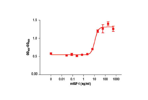 The proliferation of primary human dermal fibroblasts treated with increasing concentrations of mIGF-I was assessed. After 72 hour treatment with mIGF-I, cells were incubated with a tetrazolium salt and the OD<sub>450 </sub>- OD<sub>650 </sub>was determined.