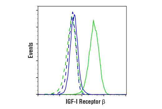Flow cytometric analysis of SK-UT-1 cells (blue) and MCF7 cells (green) using IGF-I Receptor β (D23H3) XP® Rabbit mAb (solid lines) or a concentration-matched Rabbit (DA1E) mAb IgG XP<sup>®</sup> Isotype Control #3900 (dashed lines). Anti-rabbit IgG (H+L), F(ab')<sub>2</sub> Fragment (Alexa Fluor<sup>®</sup> 488 Conjugate) #4412 was used as a secondary antibody.